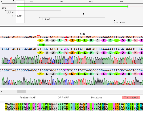 DNA Sequencing Software